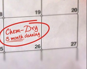 schedule a carpet cleaning with Shirley's Chem-Dry in Tipton IN