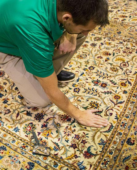 Professional Area and Oriental Rug Cleaning by Shirley's Chem-Dry in Tipton and Kokomo IN