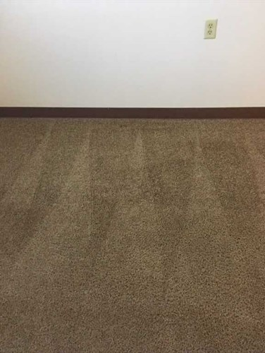 after image carpet cleaning in Tipton IN