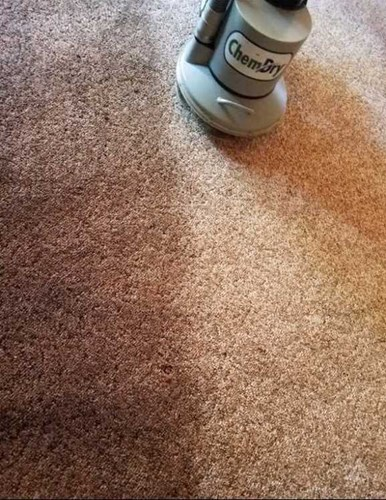 carpet cleaning results in Tipton IN