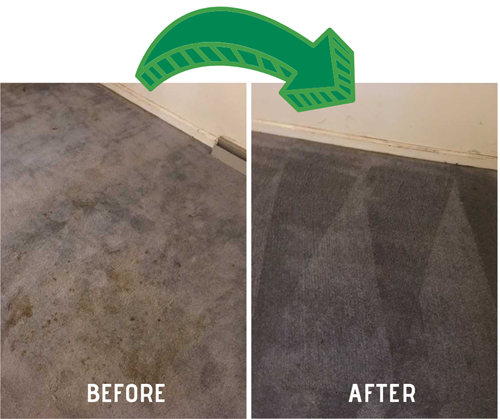 before and after carpet cleaning results in Shirley's Chem-Dry in Tipton IN